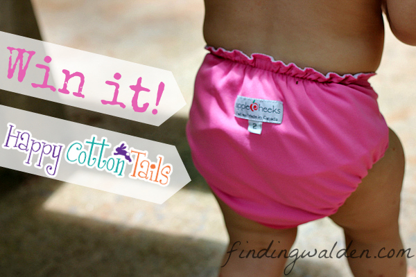 AppleCheeks swim diaper giveaway, Finding Walden